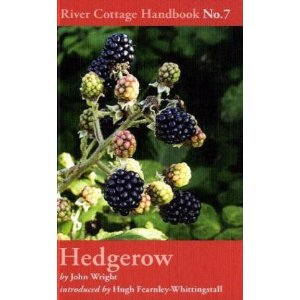 Book cover of John Wrights book 'Hedgerow'