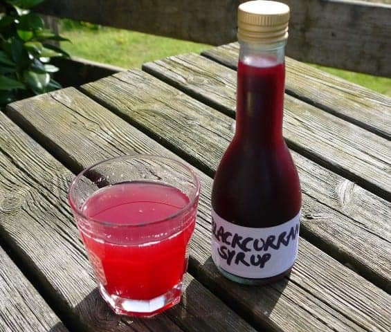 Blackcurrant-Syrup-1024x870
