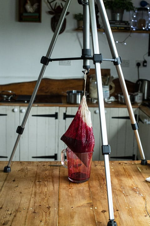 camera tripod holding a bag of draining blackcurrants dripping juice into a glass jug