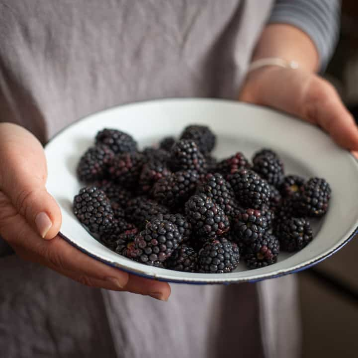 womans hands holding a white bowl filled with fresh blackberries