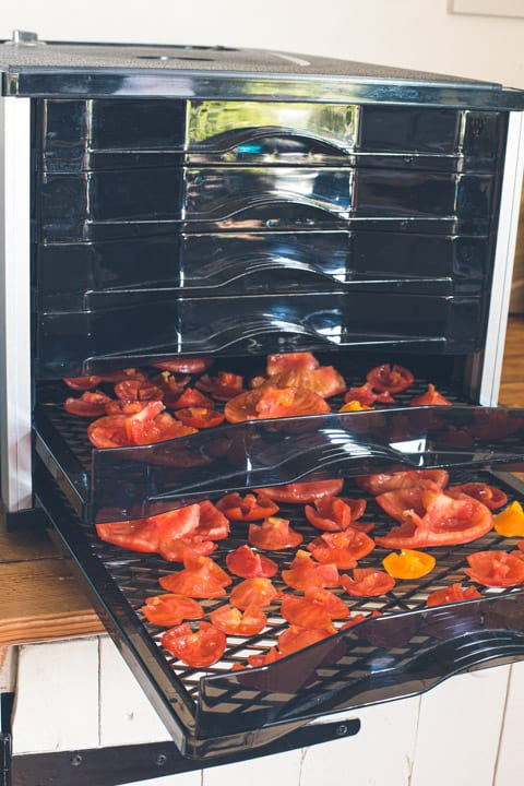 black dehydrator shelves partially open showing red halved tomatoes inside