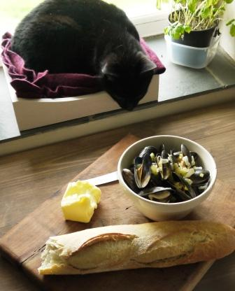 Sassy Cat admiring Dairy Free Moules Mariniere in a white bowl with french bread on a wooden board