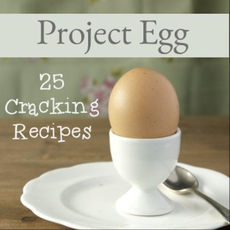 Project Egg Button