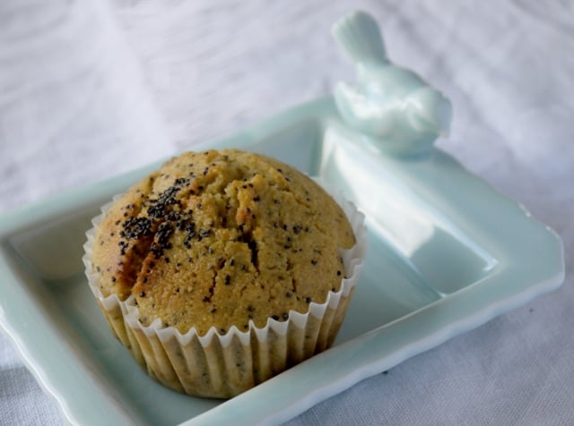 Pretty Lemon and poppy seed Amercian style muffin