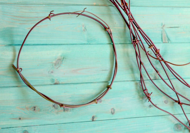 hoop of vine to make feather wreaths against a blue wooden background