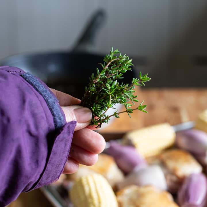 womans hand holding a small sprig of fresh thyme