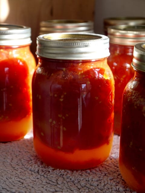 Glass jars of preserved tomatoes