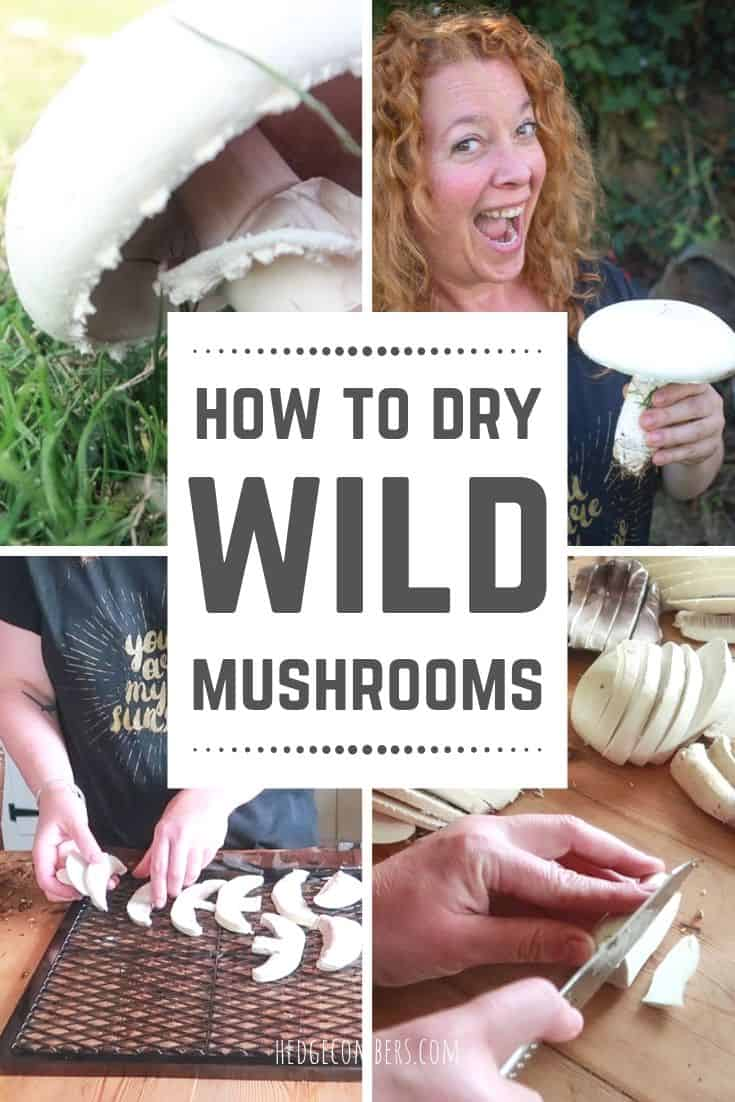 Collage of images of mushrooms being dried with 'How to dry mushrooms' written as a headline