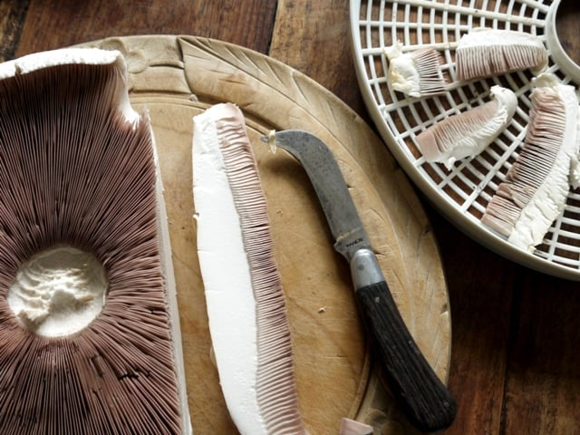 Sliced wild mushroom on a chopping board with slices in a dehydrator tray beside it