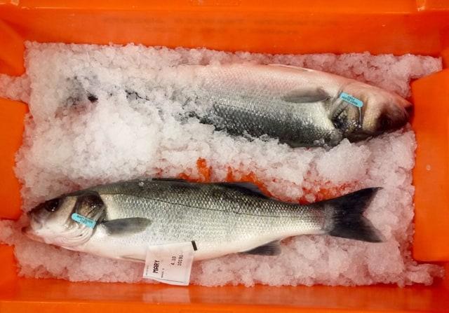 2 fresh bass on ice