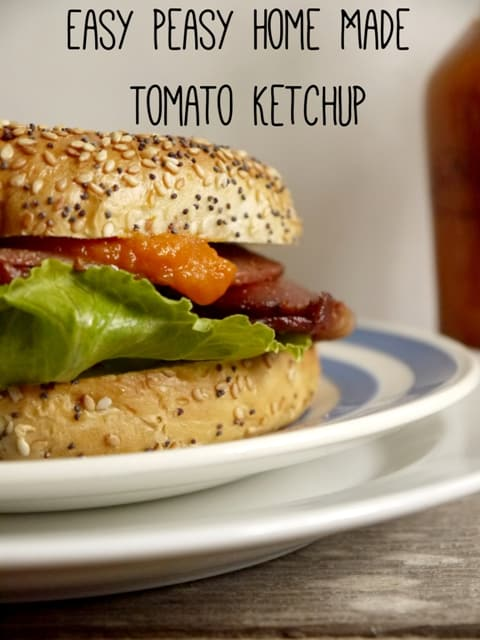 Easy Peasy Home Made Tomato Ketchup Recipe - The Hedgecombers