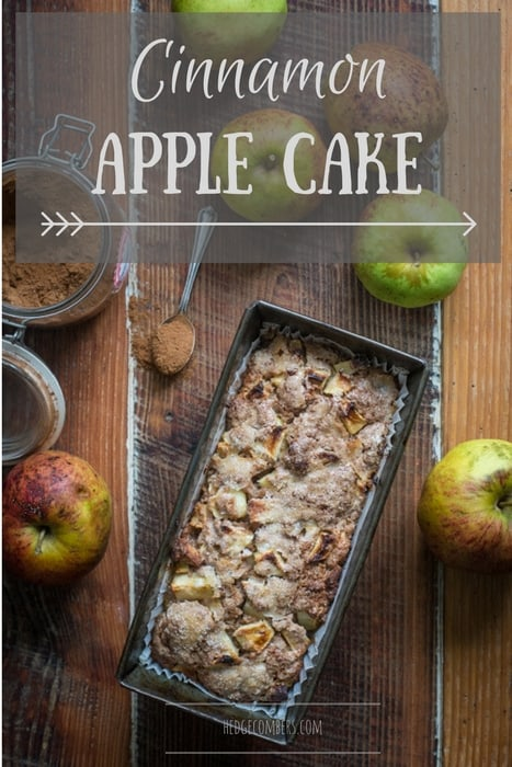 Rustic photo of wooden background, apple cake in a vintage loaf tin, with apples and glass jar of cinnamon, one of my 25 Homemade Christmas Gift Ideas