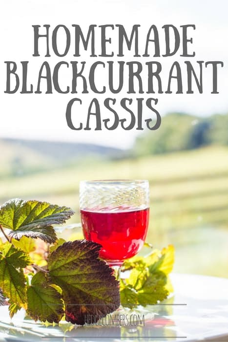 Homemade Blackcurrant Cassis in a glass on an outdoor table with Blackcurrant leaves