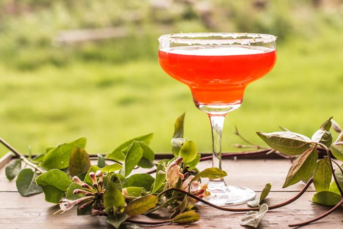 Sweet and Sour Cosmo Cocktail in a martini glass on an outdoor table