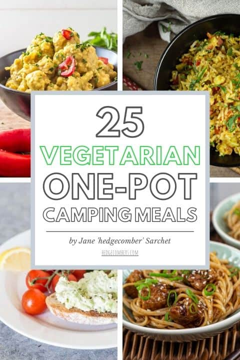 cover of an ebook about vegetarian camping meals