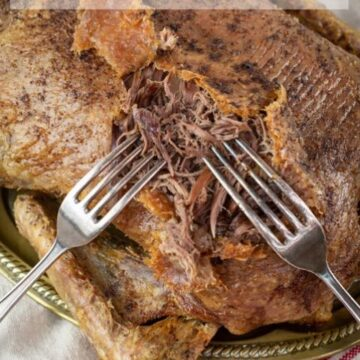 Crispy roast duck being easily shredded with two forks